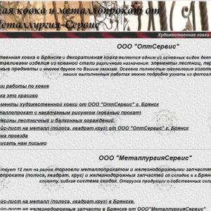 Брянск, ОптСервис